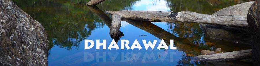 Dharawal header - Ohares Creek